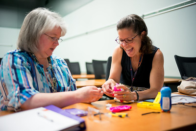 Two teachers working on a STEM project together